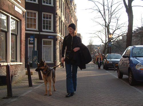 a city walk at the street side of Lijnbaansgracht canal in the Jordaan in amsterdam